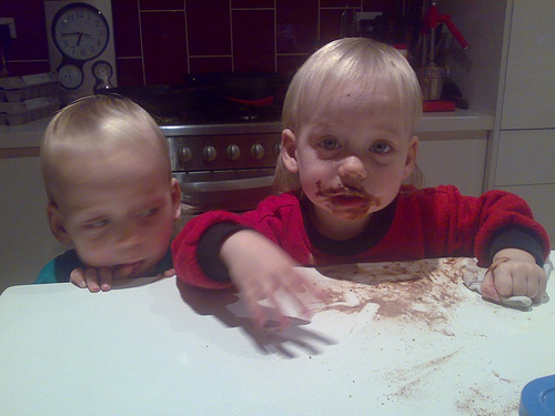 Cedar used a stool to find the chocolate, Lucas watches to see what will happen…